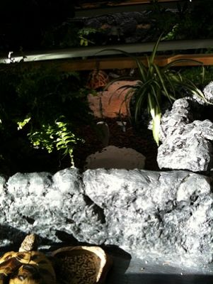 Liten (otydlig?) överblick över den hemmabyggda sköldpaddslådan